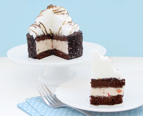Chocolate Strawberry Baked Alaska Cake recipe. So moist with a homemade strawberry ice cream middle, topped with bruleed meringue!! So good!