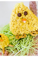 Chewey Gooey Rice Krispies Chicks