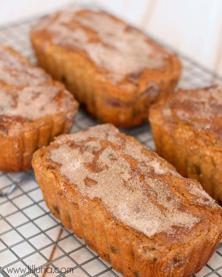 Snickerdoodle Bread - so delicious and easy (no yeast involved)! It's filled with cinnamon chips and topped with cinnamon and sugar!