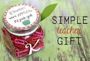If Teachers Were Apples Gift Idea - So cute but simple!!