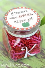 If Teachers Were Apples, I'd Pick You Teacher Gift + Free Tags