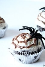 Chocolate Spiderweb Cupcakes