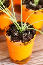 Pudding Carrot Cups
