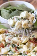 cheesy-tortellini-spinach-bake-3