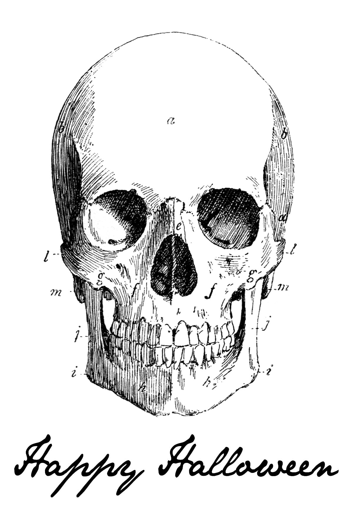 Shocking image with regard to printable skulls