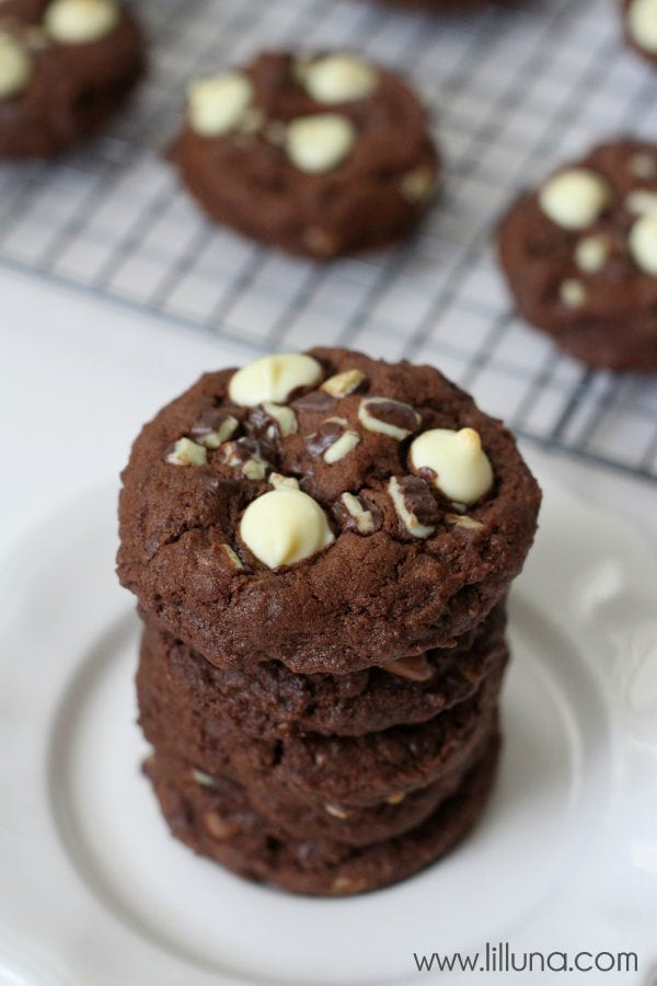 Soft and Delicious Double Chocolate Mint Cookies! #cookies #mint #chocolate