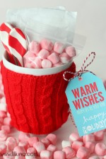 Hot Cocoa Gift Idea
