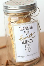 Cake Batter Snickerdoodles Gift + Gratitude Blog Hop