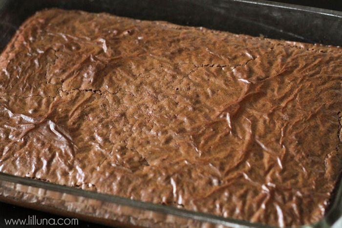 Frosted-Thin-Mint-MM-Brownies-1