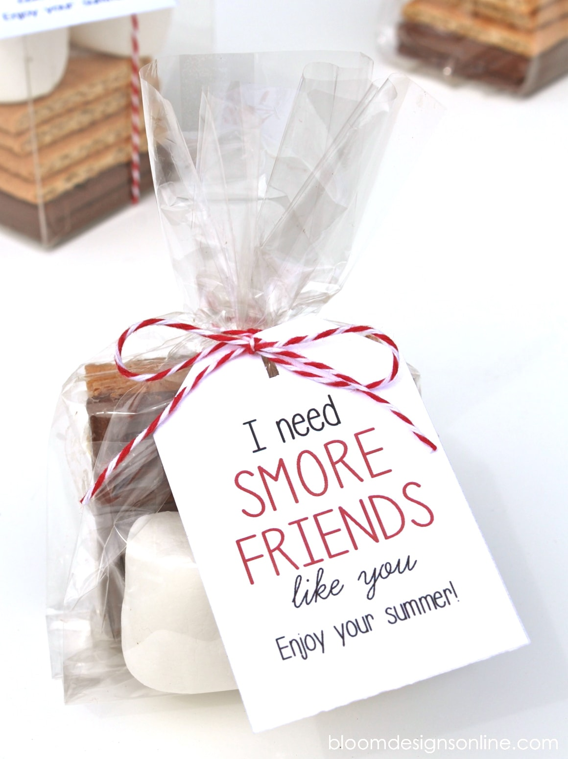 Cute End of the School Year Gift for Friends - I need Smore Friends like you! Free print on { lilluna.com }