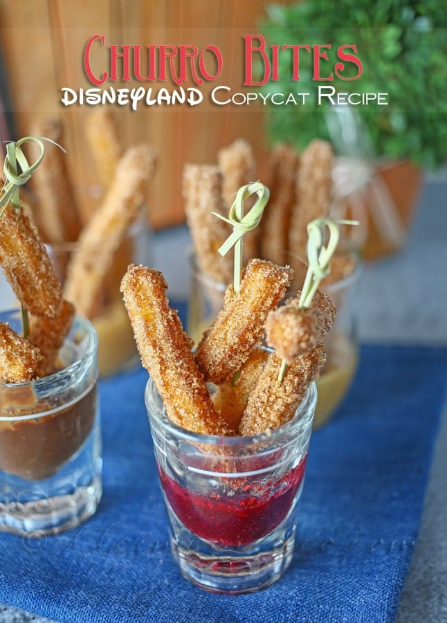 Disneyland Churro Bites - so delicious!! { lilluna.com }