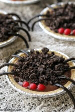 chocolate-pudding-spider-pies-5