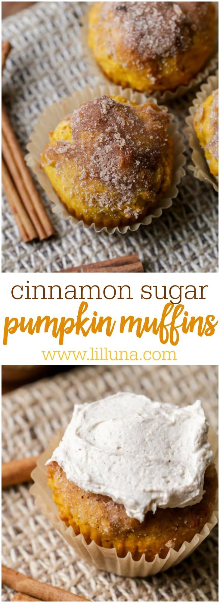 Cinnamon Sugar Pumpkin Muffins recipe. So moist and full of cinnamon, sugar, and pumpkin with a cinnamon butter cream cheese spread!