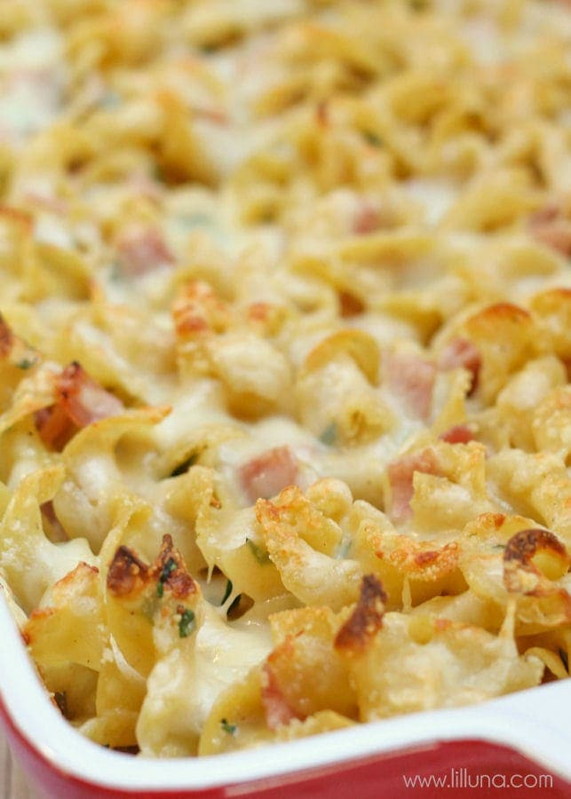 Cheesy Mac and Cheese - the best cheesy dish you'll ever try! Egg noodles, parsley, and diced ham mixed with cream and lots of cheeses!!