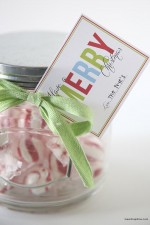 Christmas Jar Gift idea with FREE Printable Tags on { lilluna.com }