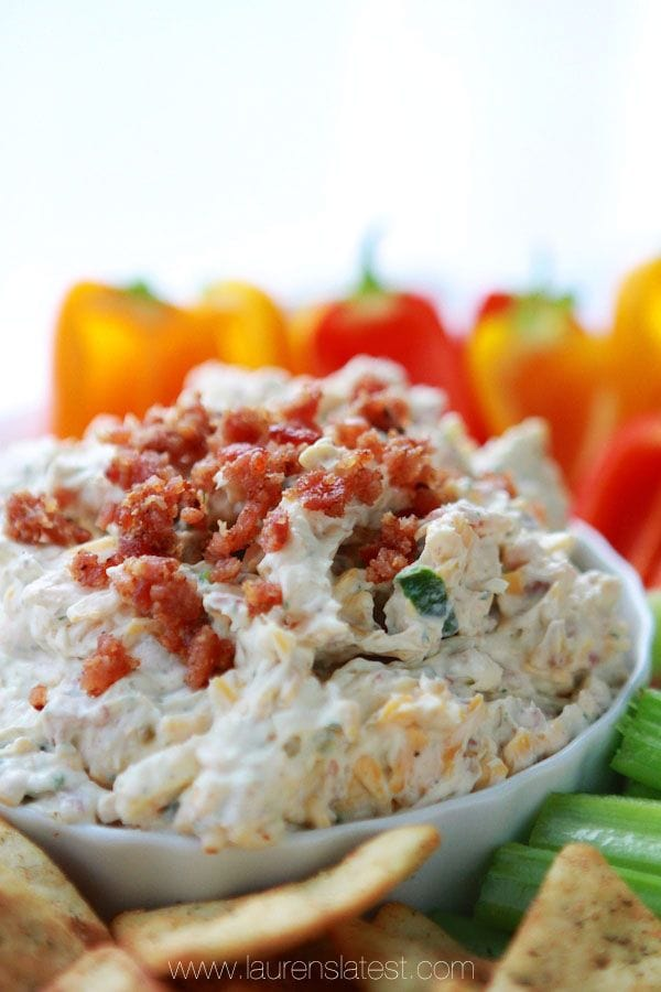 20+ Dip Recipes - delicious dip appetizers for any party! { lilluna.com }