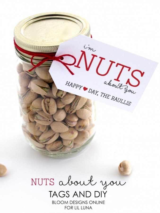 Adorable Nuts About You Jar perfect for Valentine's Day. Free prints on { lilluna.com } A cute and inexpensive idea!!