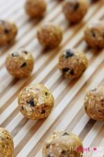 Oatmeal Cookie Energy Bites