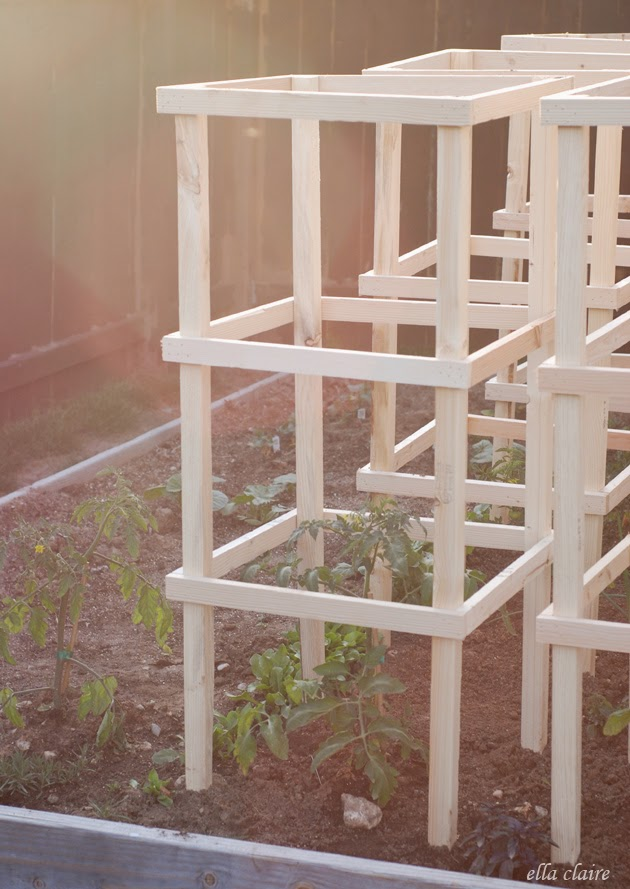 DIY Wooden Tomato Cages Tutorial