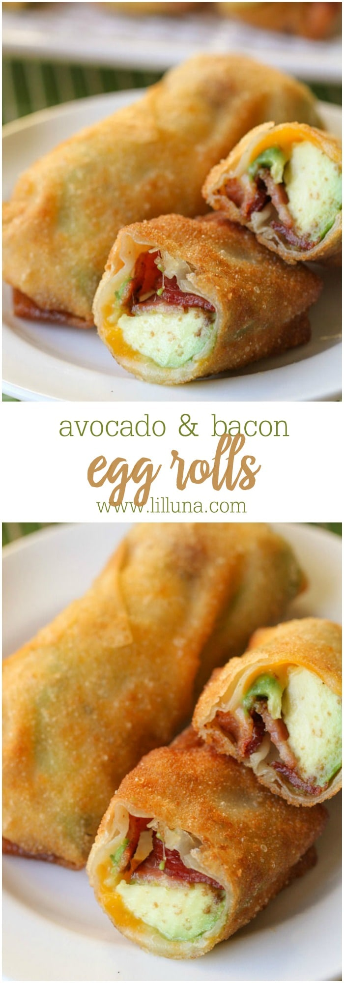 These Avocado Bacon Egg Rolls Recipe are to die for! Can't go wrong when they're filled with avocado, bacon and cheese!