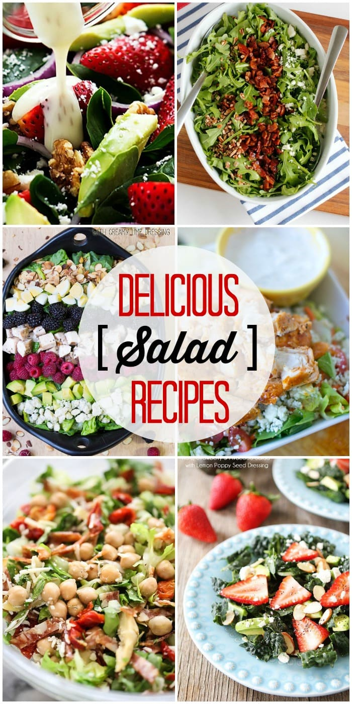 A refreshing salad is the perfect thing to eat in this summer heat! Check out this roundup of amazing salad recipes on { lilluna.com }!!