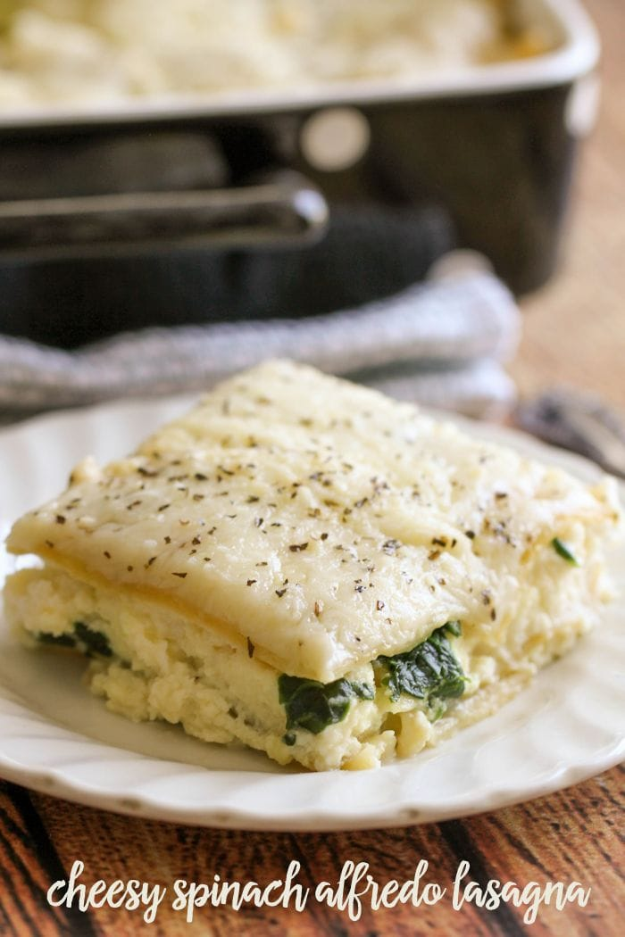 Cheesy Spinach Alfredo Lasagna - this dish is filled with cheese and spinach and has alfredo sauce used through out. It's our new favorite way to enjoy Lasagna!