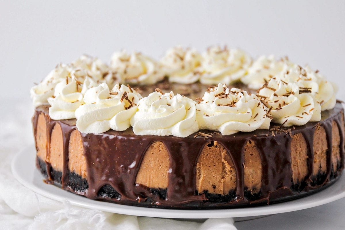 Chocolate cheesecake topped with whipped cream