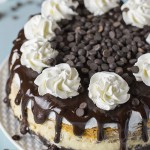 Double Layer Pumpkin Cheesecake with Oreo Crust
