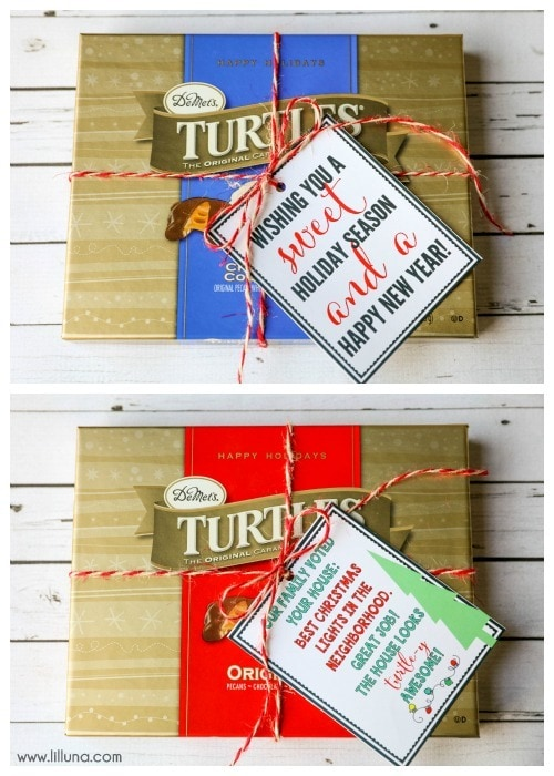 "Turtle-y AWESOME gift idea!! A cute and simple gift idea to give this holiday season. Just attach the tags for a ""sweet season"" or to award to the ""best Christmas lights in the neighborhood!"""