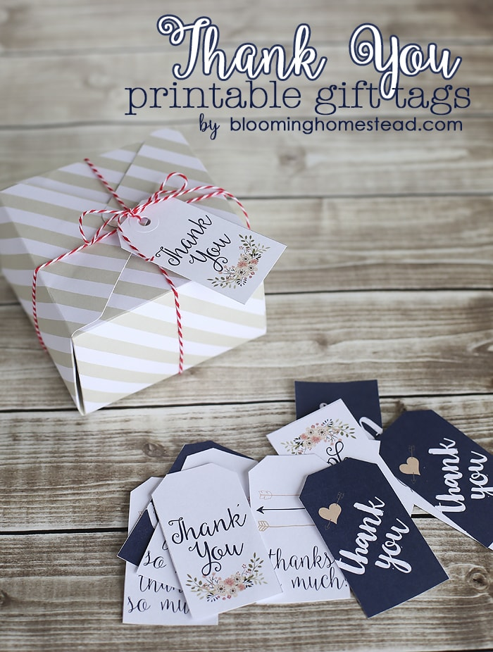It's just a photo of Persnickety Thank You Tags Printable
