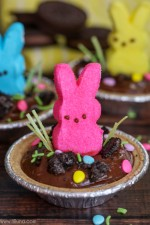 Mini Bunny Pudding Pies