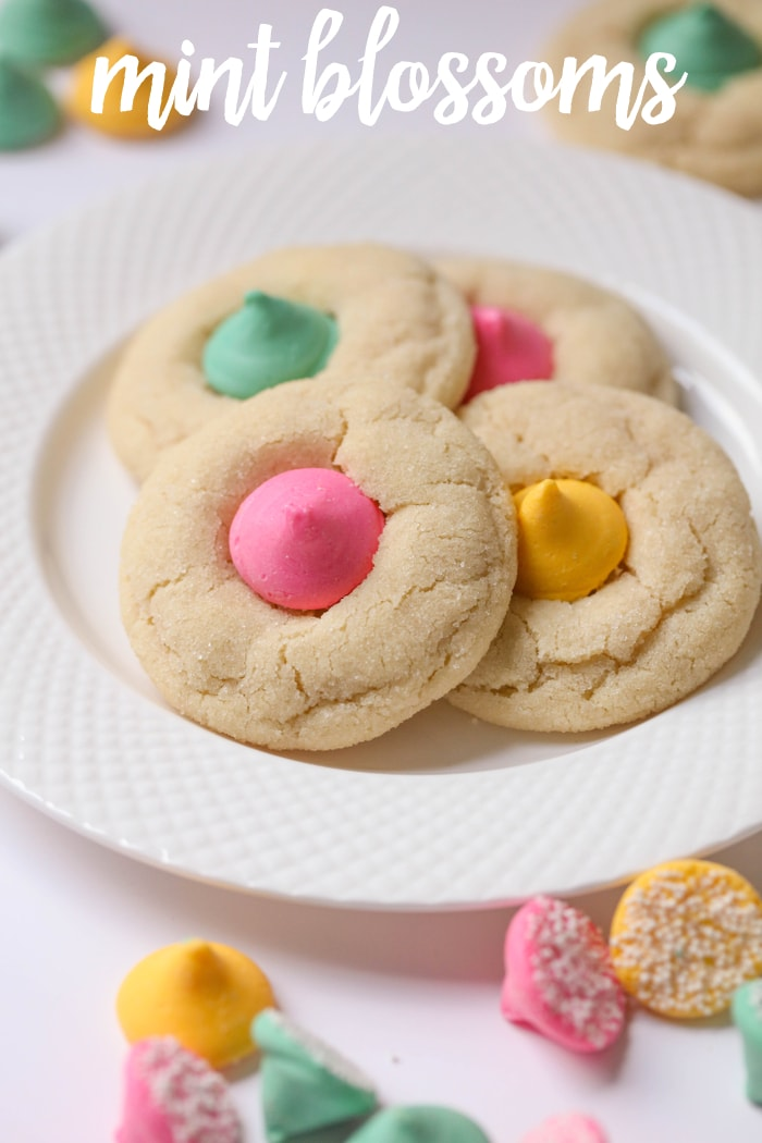 Mint Blossoms - a chewy, soft sugar cookie rolled in sugar and topped with a Mint Meltaway candy. Its' one of our new, favorite cookie recipes!