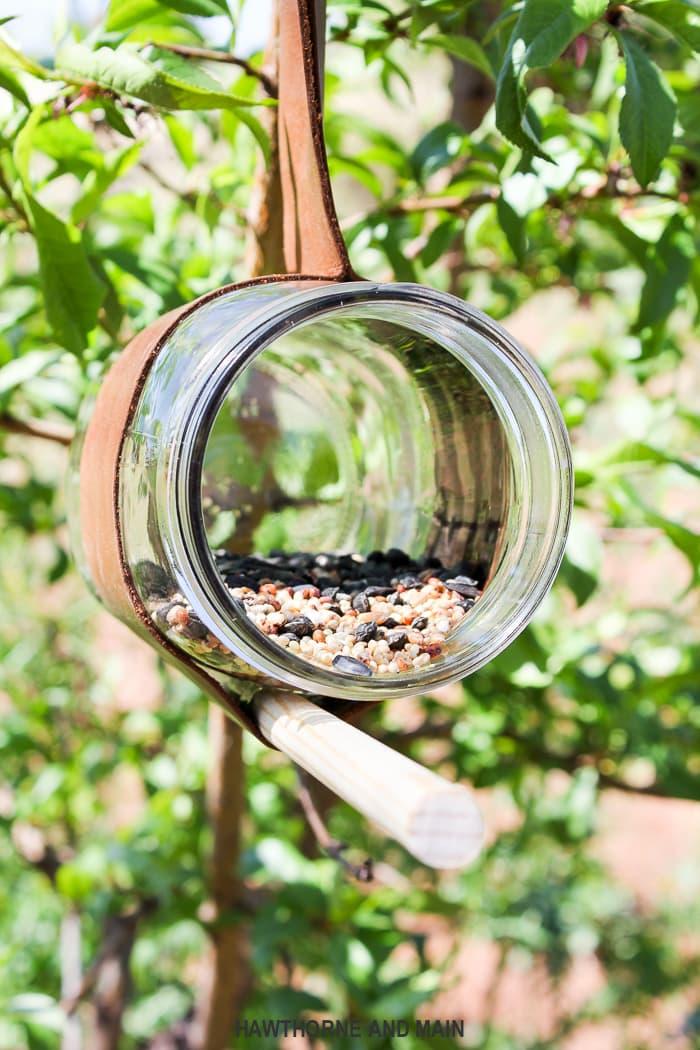 Diy Bird Feeder Lil Luna