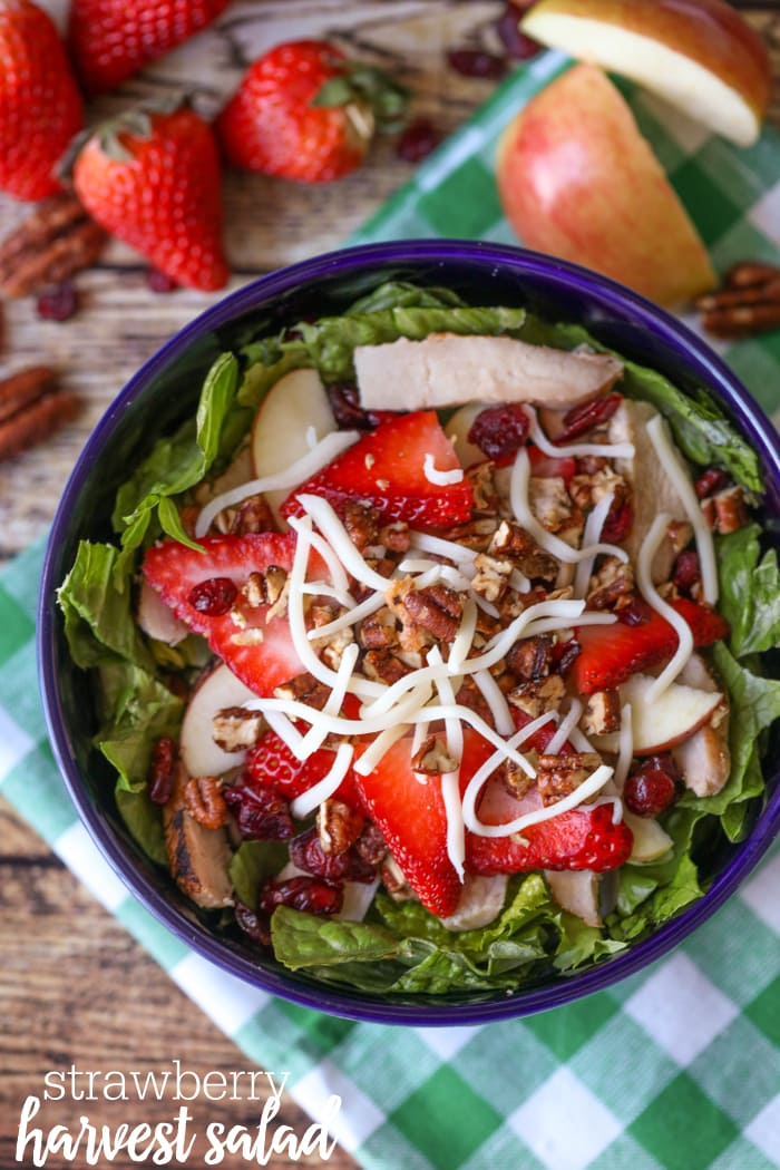 Strawberry harvest salad in a bowl