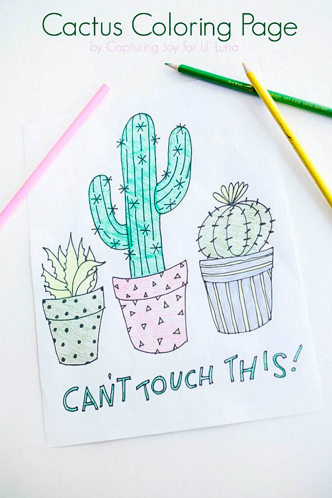 Cactus coloring page lil 39 luna for Christmas cactus coloring page