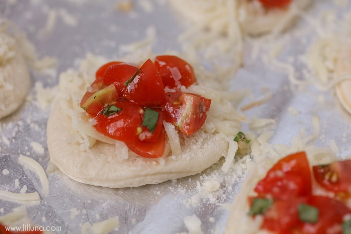 Mini Margherita Pizzas - bite-sized pizzas topped with cheese, tomatoes, fresh basil and more. Perfect for lunch, dinner or even as an appetizer at parties!
