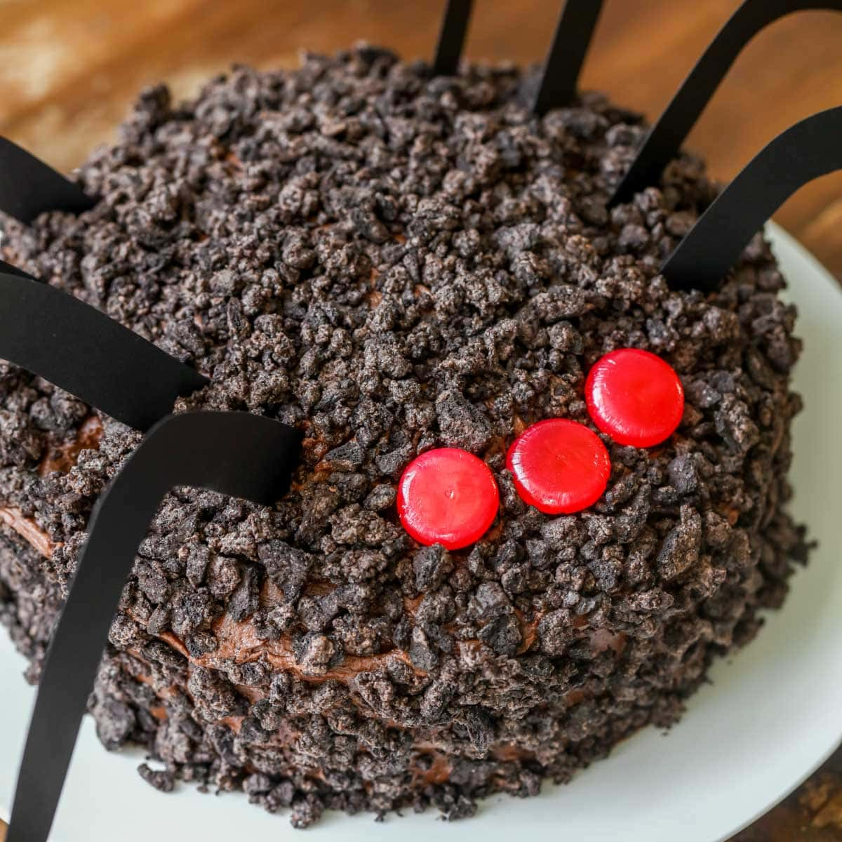 close up of chocolate Oreo spider cake topped with cinnamon eyes on a white plate