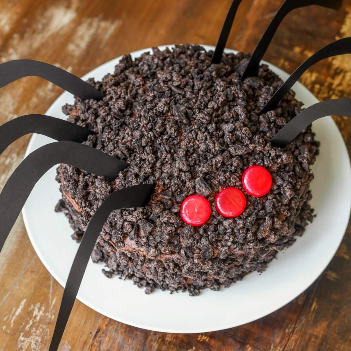 Chocolate Oreo spider cake with cinnamon eyes on a white plate