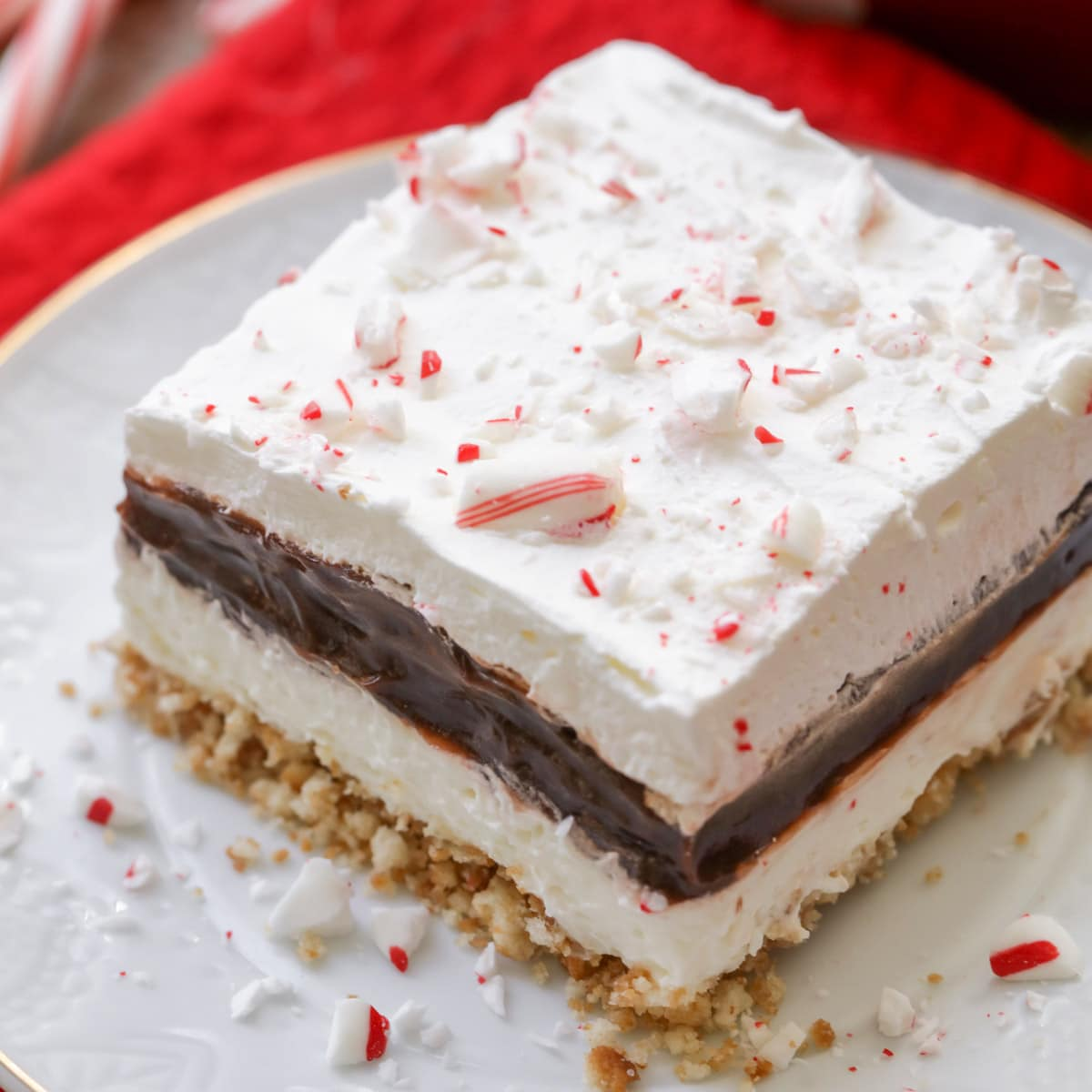 Slice of peppermint chocolate delight on a white plate.