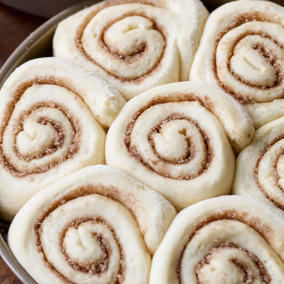 sticky walnut buns rising in a baking dish