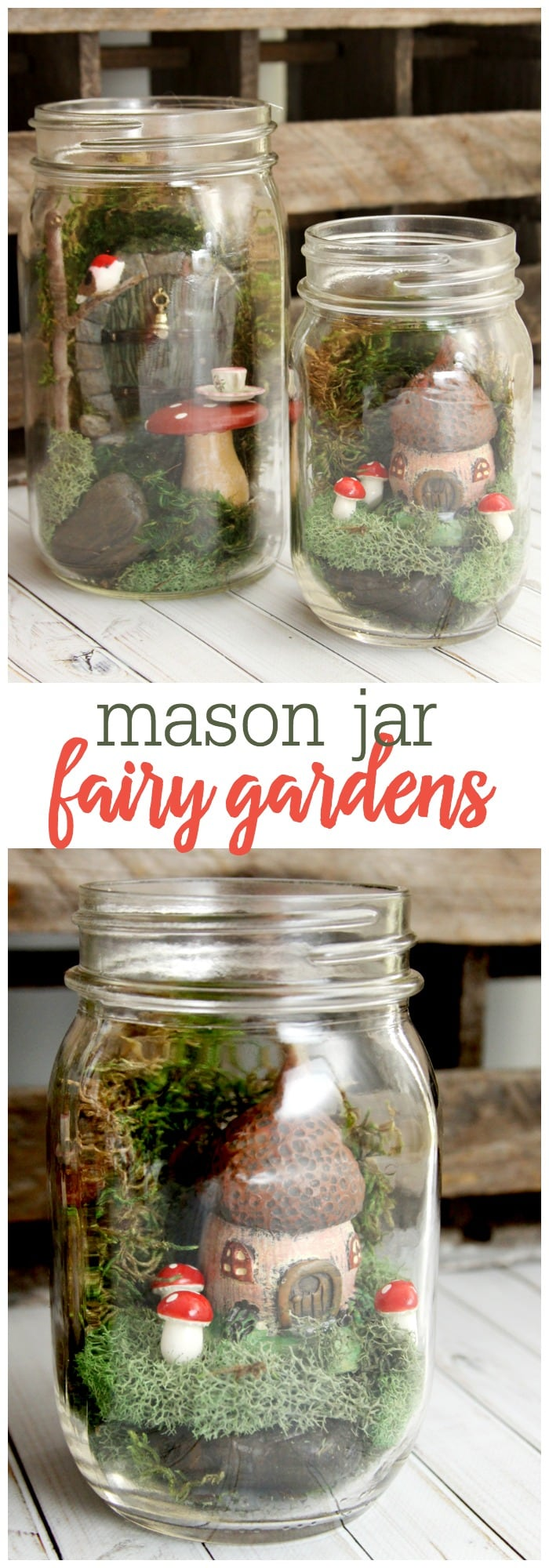 Mason Jar Fairy Gardens Have you