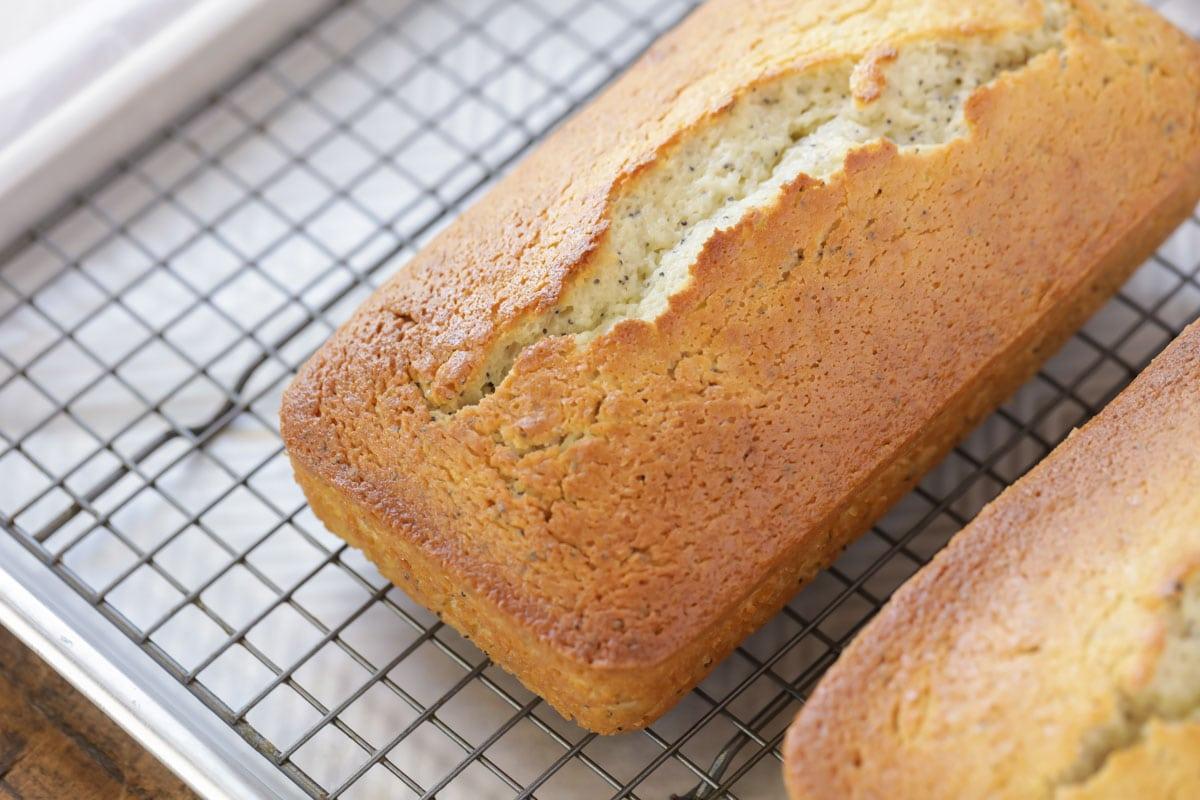 Lemon Poppy Seed Bread cooling on rack