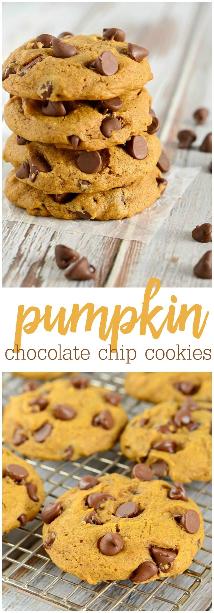 Best Pumpkin Chocolate Chip Cookies Lil Luna
