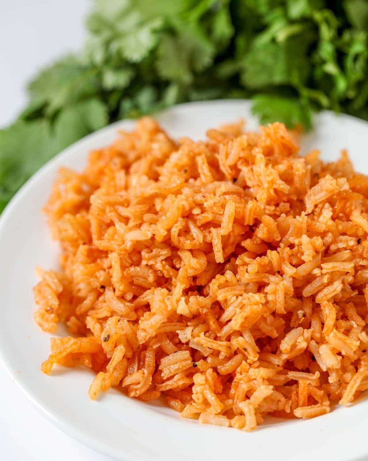 Mexican Rice Recipe on plate
