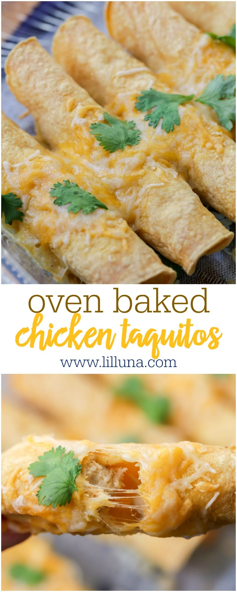 Simple and tasty baked Chicken Taquitos. These rolled tortillas are filled with chicken, cheese, salsa and so many delicious spices!