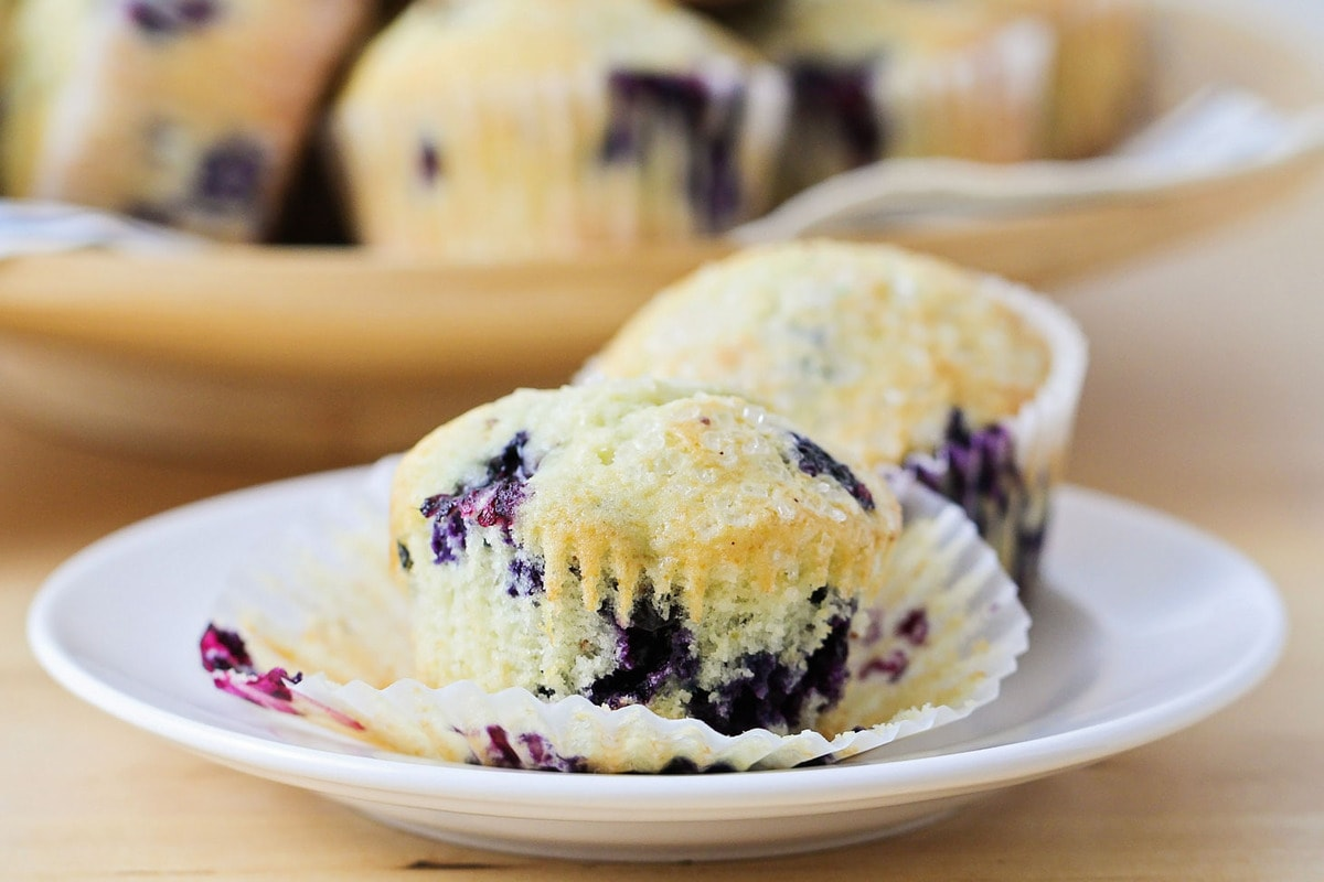 Best blueberry muffins on plate