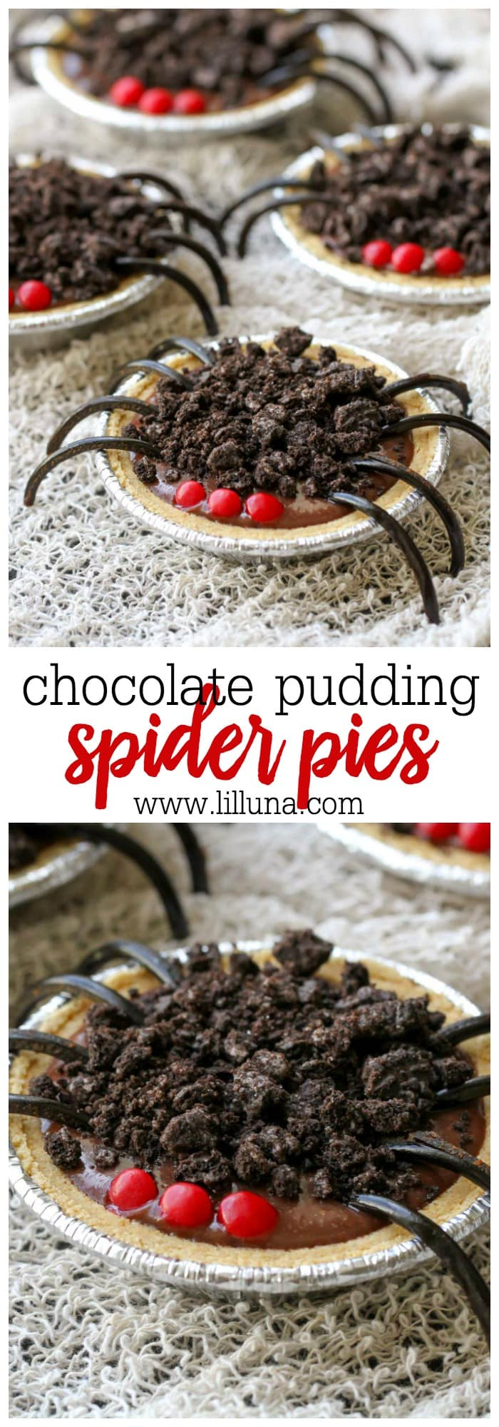 Chocolate Pudding Pie Spiders