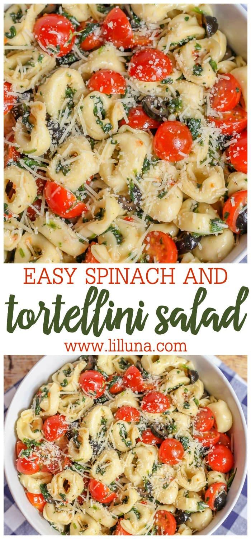 The best tortellini salad recipe