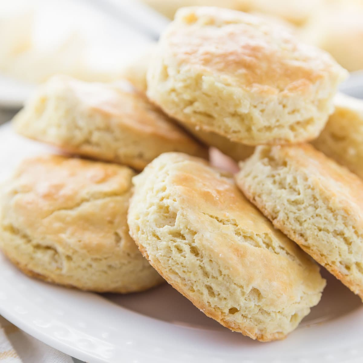 Homemade Biscuits on white plate