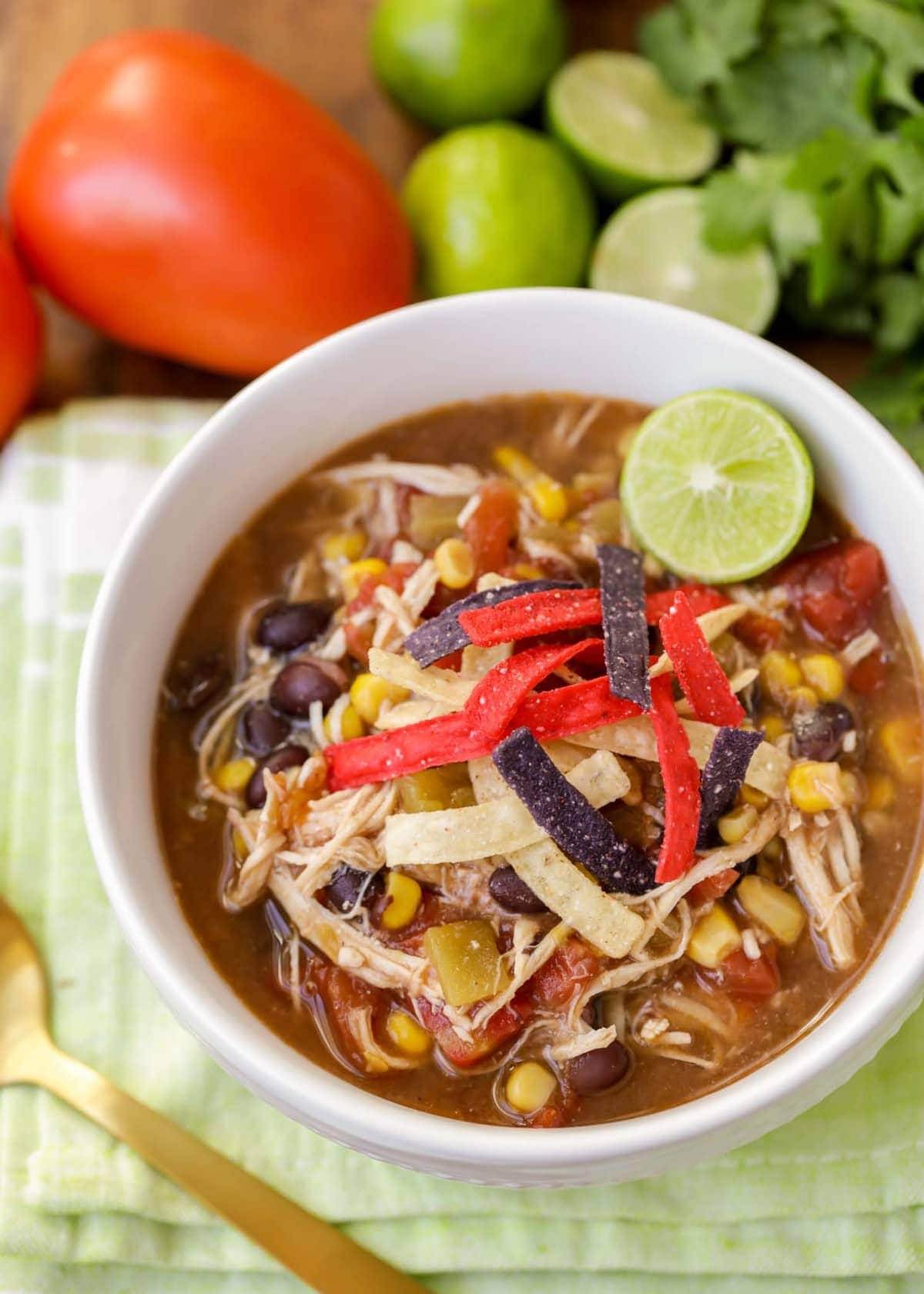 Healthy Chicken Tortilla Soup in the Crock Pot
